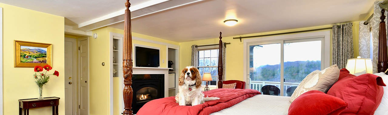 Enjoying the bed at The Wilburton in Machester, Vermont