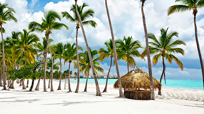 A white sand beach with palm trees in the Dominican Republic