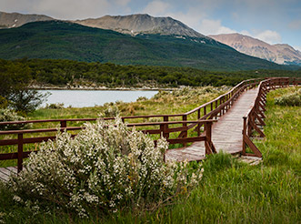 A trail at Tierra del Fuego National Park in Argentina