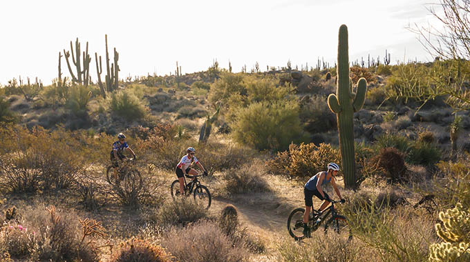 REI Co-Op Adventures offers bike rentals, as well as hiking and biking tours in the McDowell Sonoran Preserve and other area parks. | Courtesy REI Co-Op Adventure Centers
