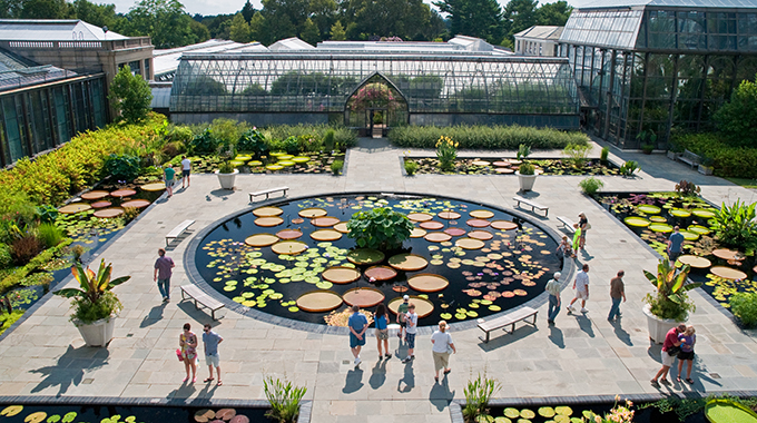 Visitors admire waterlily ponds at Longwood Garden. | Photo courtesy Longwood Garden