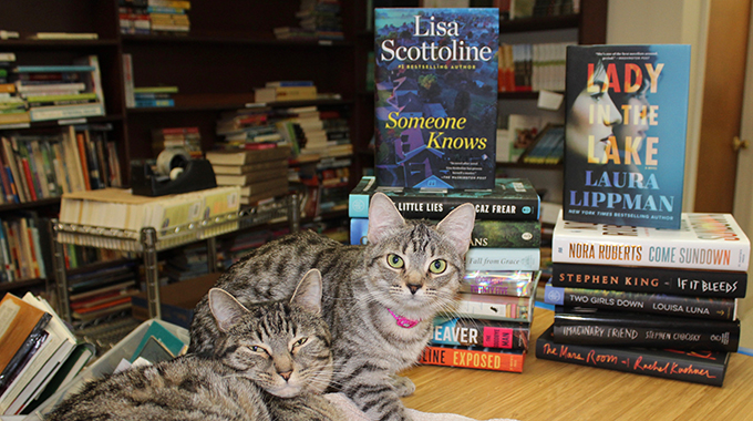 cats at Redbird books