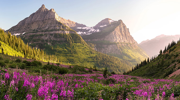 Mount Oberlin and Cannon Mountain at Glacier National Park