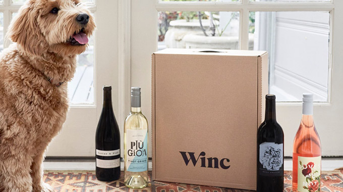 Dog with Winc delivery crate and 4 wine bottles